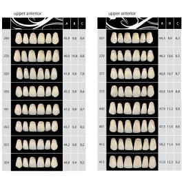 Zęby Almamiss kolor Vita przednie górne