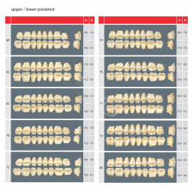 Zęby Estetic kolor Vita boczne górne