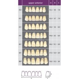 Zęby Classic kolor Vita przednie górne