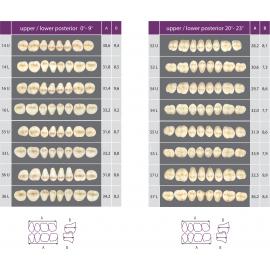 Zęby Classic kolor Vita boczne górne