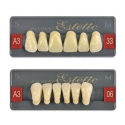 Zęby Wiedent Trójwarstwowe Estetic kolor Wiedent