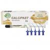 Calcipast strzykawka 2.1g