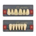 Zęby Wiedent Trójwarstwowe Estetic kolor Vita